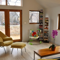Bucktown renovation: Living room