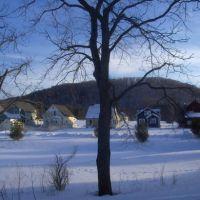 Empire, Michigan: Trees & Winter view